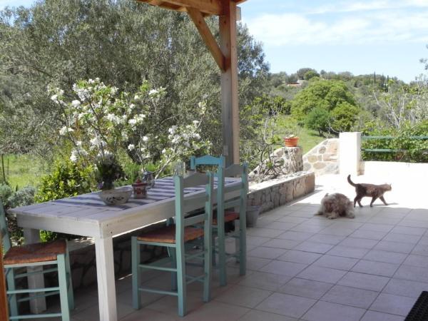 Ferienhaus Olive Garden - Oase der Ruhe (2167110), Vafeios, Lesbos, Ägäische Inseln, Griechenland, Bild 31