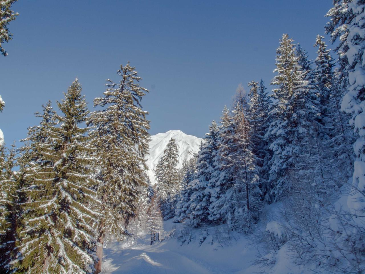 Ferienwohnung Urchiges Walliserchalet auf Rosswald | Alphütte OG (2171131), Rosswald, Brig - Simplon, Wallis, Schweiz, Bild 21