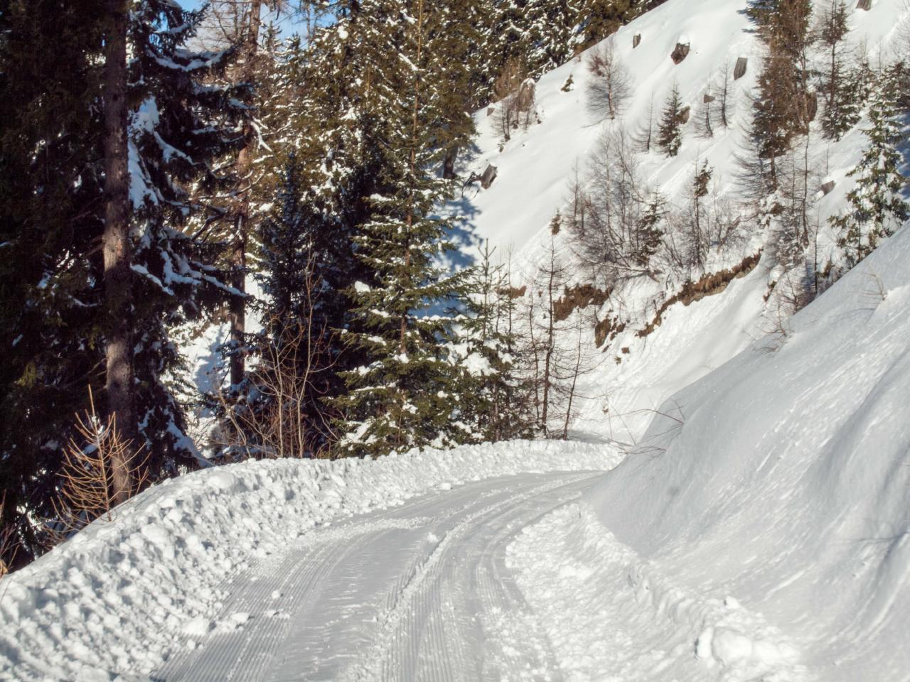 Ferienwohnung Urchiges Walliserchalet auf Rosswald | Alphütte OG (2171131), Rosswald, Brig - Simplon, Wallis, Schweiz, Bild 22