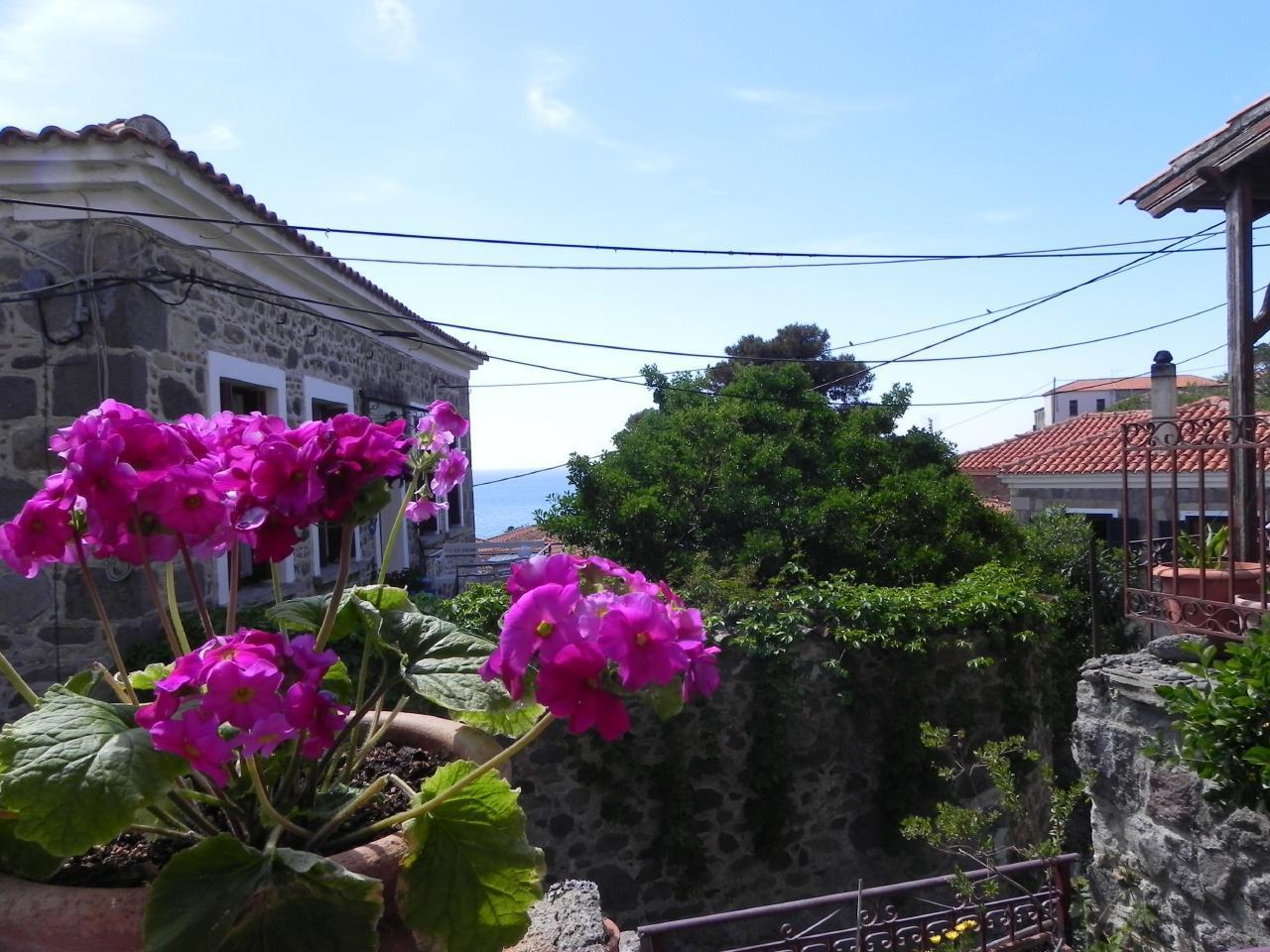 Holiday house Marianthi - das Juwel im Herzen Molivos (2177447), Vafeios, Lesbos, Aegean Islands, Greece, picture 21