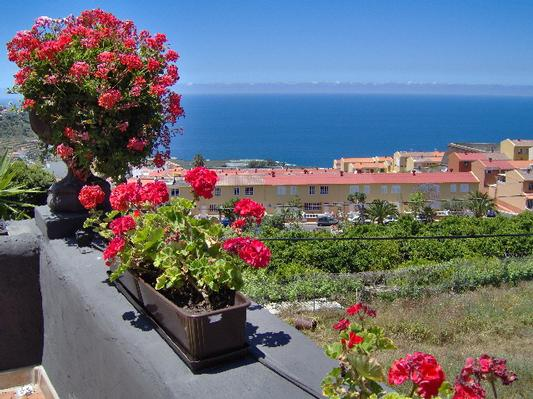 Appartement de vacances Apartment 3 (221000), Icod de los Vinos, Ténérife, Iles Canaries, Espagne, image 9