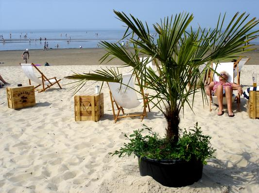 Holiday house Kugelbake (221356), Cuxhaven, Cuxhaven, Lower Saxony, Germany, picture 9