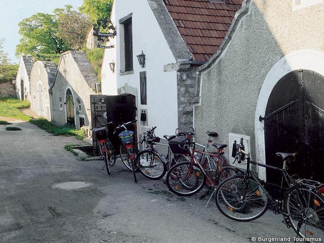 Ferienhaus City Appartement Haus - Klambauer (2212864), Frauenkirchen, Neusiedler See, Burgenland, Österreich, Bild 27