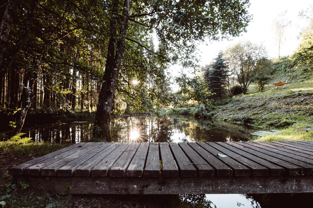 Ferienhaus Luxuschalet Arber (223681), Regen, Bayerischer Wald, Bayern, Deutschland, Bild 16