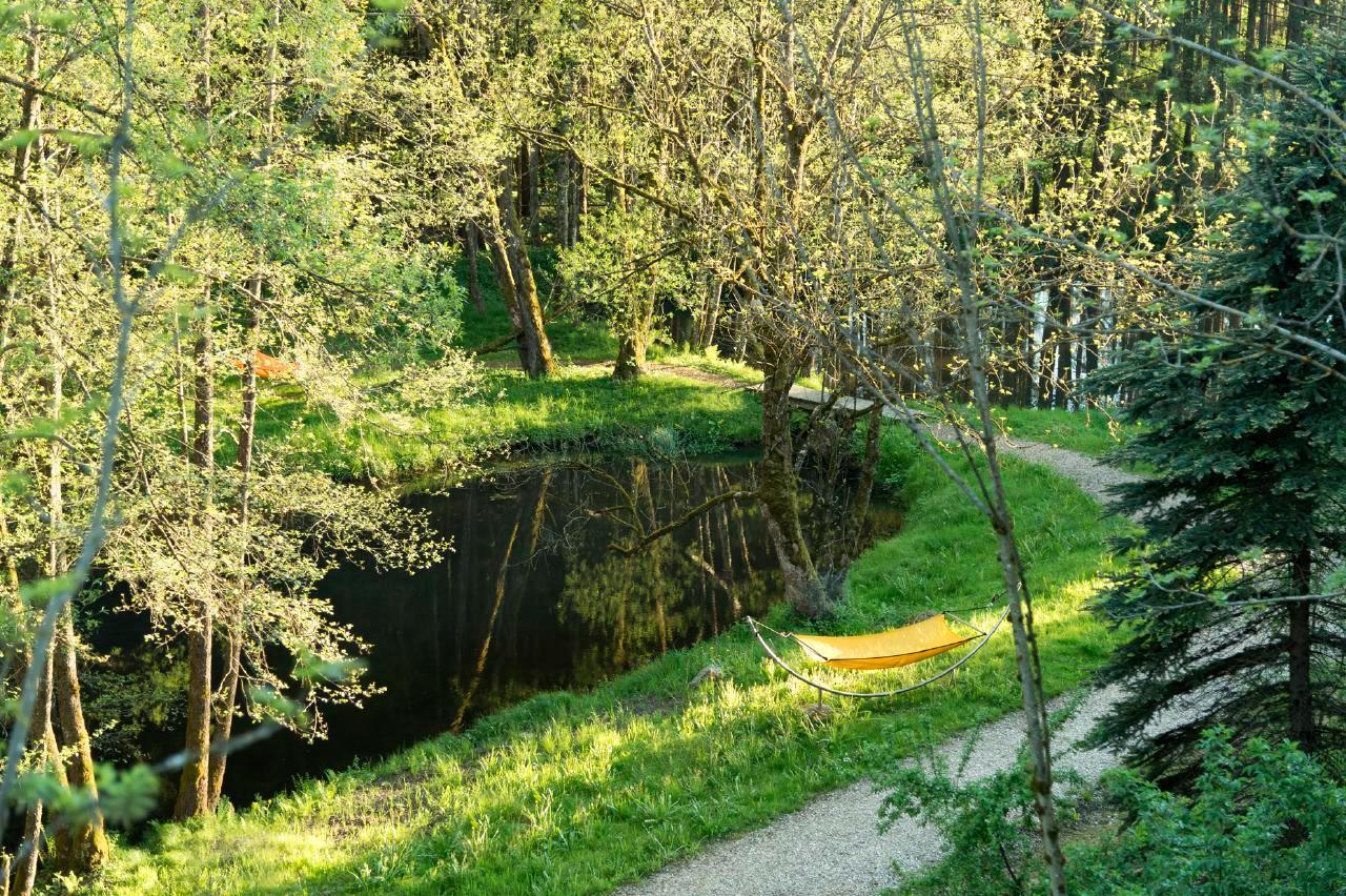 Ferienhaus Luxuschalet Arber (223681), Regen, Bayerischer Wald, Bayern, Deutschland, Bild 4