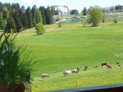 Ferienhaus Baldauf's Alpchalet in Oberstdorf - mit allen Bergbahnen im Sommer kostenlos fahren (2231331), Oberstdorf, Allgäu (Bayern), Bayern, Deutschland, Bild 18