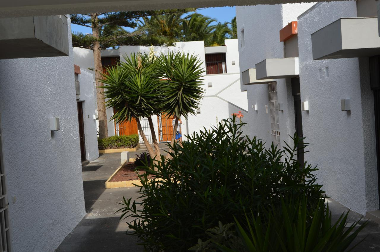 Appartement de vacances WOHN SPRING (2231371), Arona (ES), Ténérife, Iles Canaries, Espagne, image 21