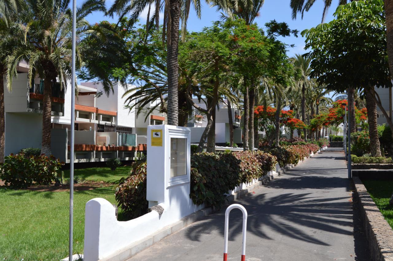Appartement de vacances WOHN SPRING (2231371), Arona (ES), Ténérife, Iles Canaries, Espagne, image 15