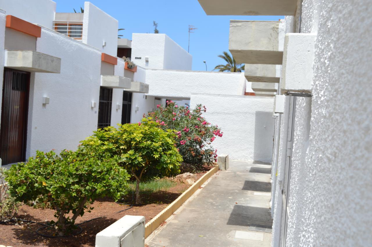 Appartement de vacances WOHN SPRING (2231371), Arona (ES), Ténérife, Iles Canaries, Espagne, image 17