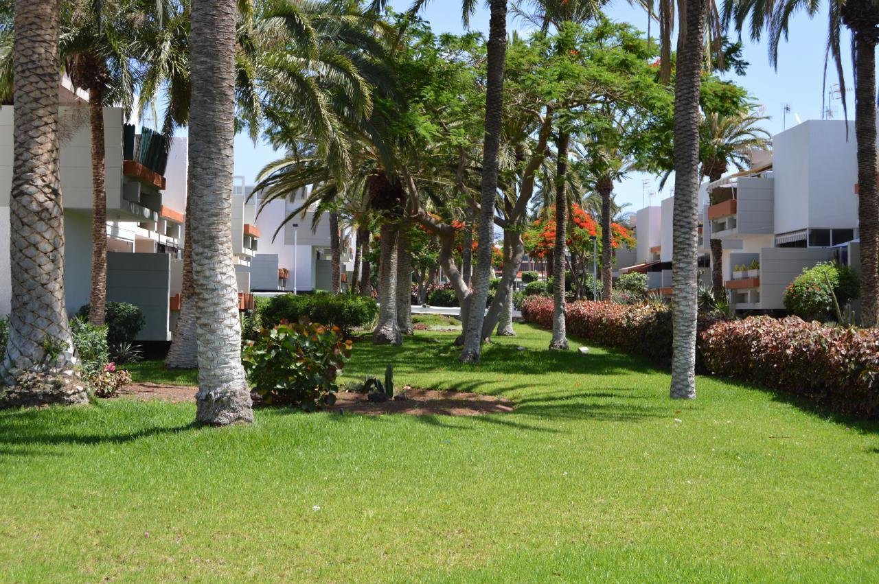 Appartement de vacances WOHN SPRING (2231371), Arona (ES), Ténérife, Iles Canaries, Espagne, image 16