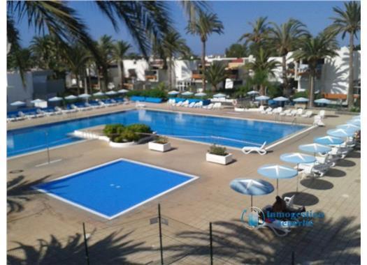 Appartement de vacances WOHN SPRING (2231371), Arona (ES), Ténérife, Iles Canaries, Espagne, image 27
