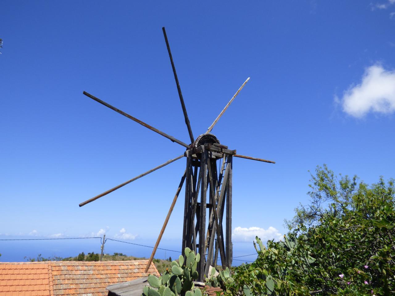 Ferienhaus FINCA TOPO DEL DRAGO (224349), Puntagorda, La Palma, Kanarische Inseln, Spanien, Bild 29