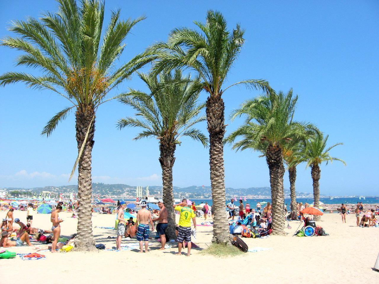 Ferienwohnung Appartement 'Près de Cannes' (226572), Mandelieu la Napoule, Côte d'Azur, Provence - Alpen - Côte d'Azur, Frankreich, Bild 11