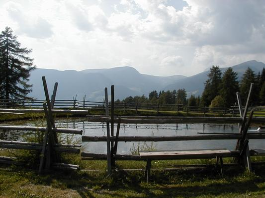 Ferienwohnung Villa Lageder Tannenblick (228332), Sarnthein (Sarentino), Bozen, Trentino-Südtirol, Italien, Bild 16