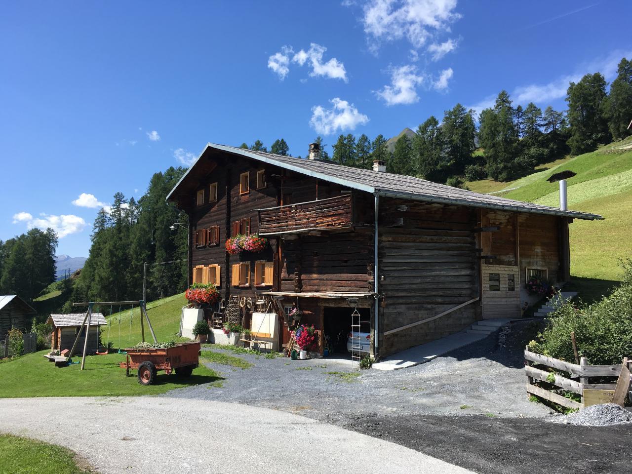 Ferienwohnung Hof Unterhus (2290055), Tenna (CH), Safiental, Graubünden, Schweiz, Bild 9