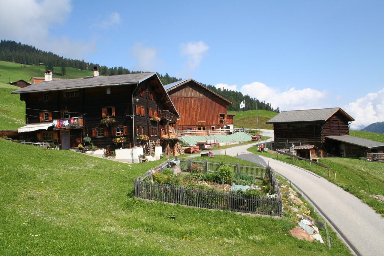 Ferienwohnung Hof Unterhus (2290055), Tenna (CH), Safiental, Graubünden, Schweiz, Bild 2