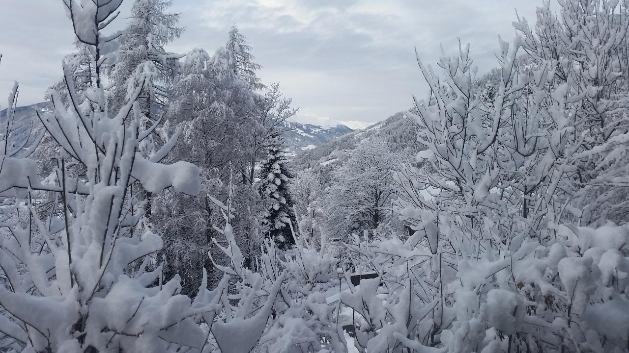 Appartement de vacances Franziska in der BergArt (2298601), Dölsach, Osttirol, Tyrol, Autriche, image 38