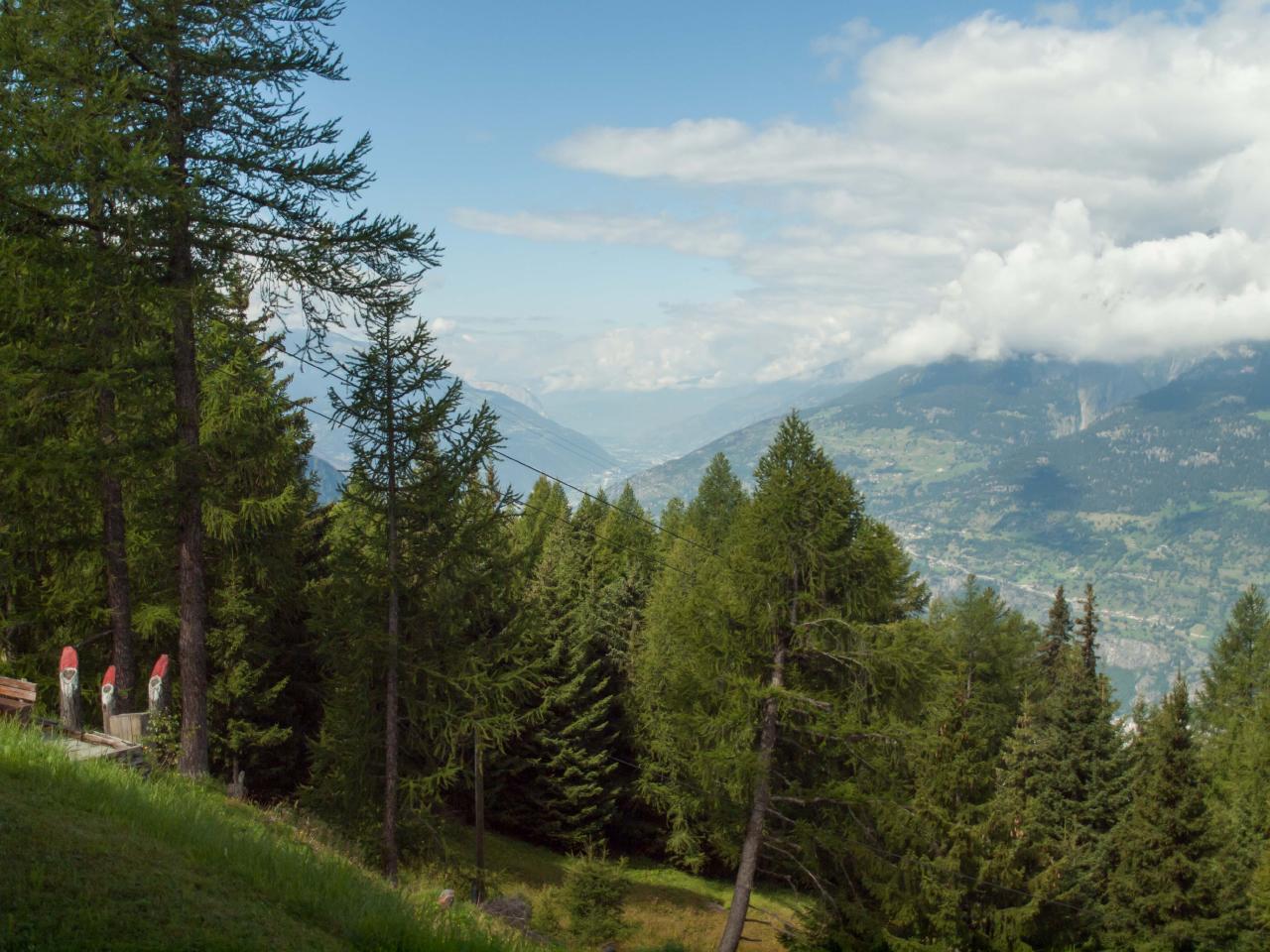 Ferienwohnung Chalet Talblick auf Rosswald im Wallis (2303665), Rosswald, Brig - Simplon, Wallis, Schweiz, Bild 7
