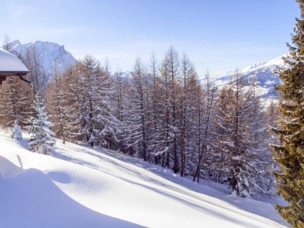 Ferienwohnung Chalet Ahorn | ein typisches Walliser Chalet auf Rosswald (2311568), Rosswald, Brig - Simplon, Wallis, Schweiz, Bild 4