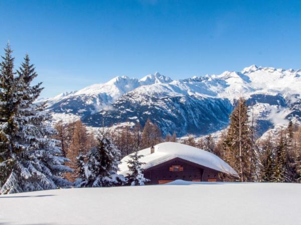 Ferienwohnung Chalet Ahorn | ein typisches Walliser Chalet auf Rosswald (2311568), Rosswald, Brig - Simplon, Wallis, Schweiz, Bild 3