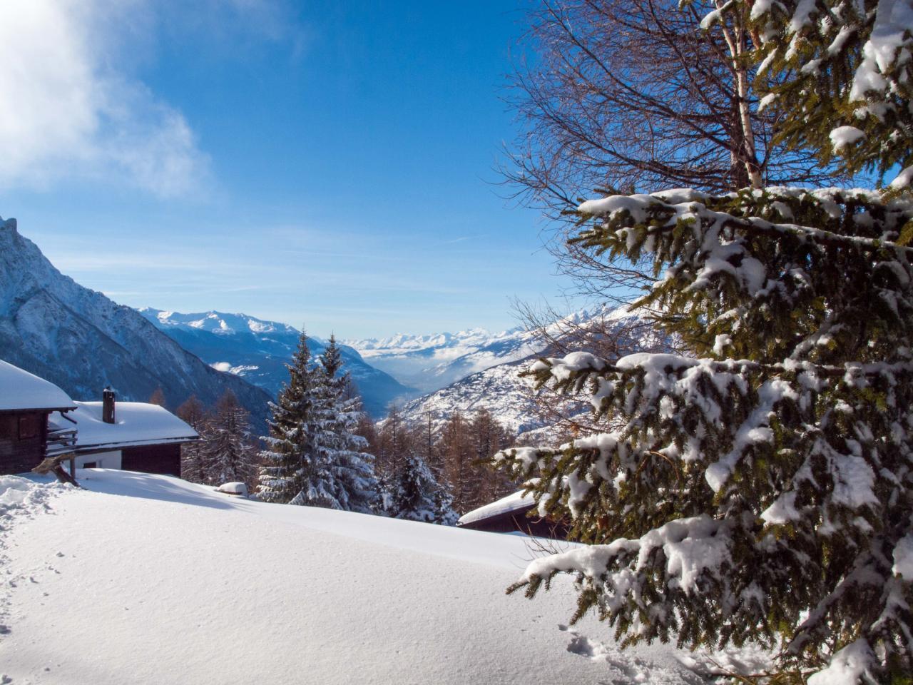Ferienwohnung Chalet Bergfink | Ferienwohnung in den Walliser Bergen auf Rosswald (2311758), Rosswald, Brig - Simplon, Wallis, Schweiz, Bild 13