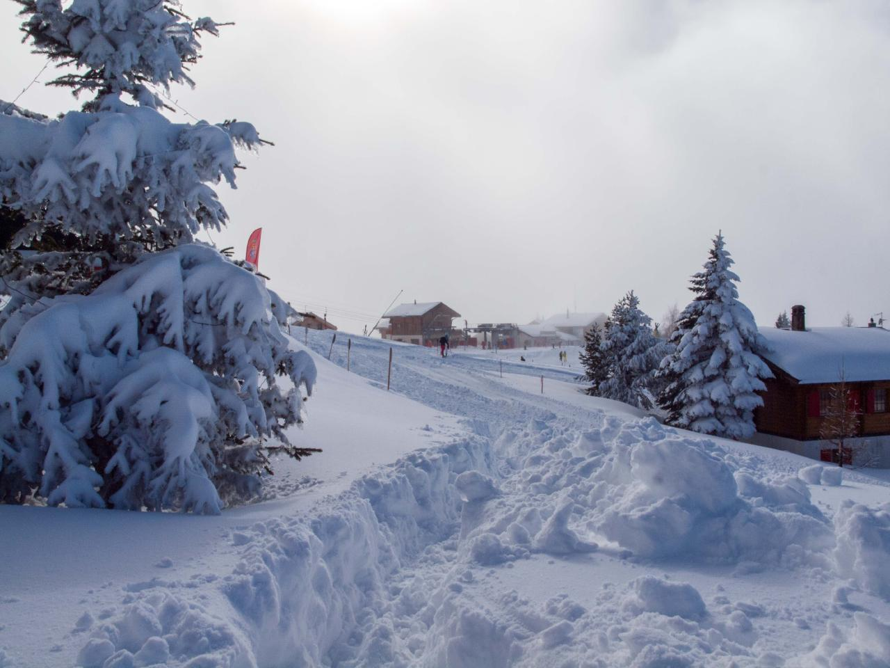 Ferienwohnung Chalet Bergfink | Ferienwohnung in den Walliser Bergen auf Rosswald (2311758), Rosswald, Brig - Simplon, Wallis, Schweiz, Bild 11