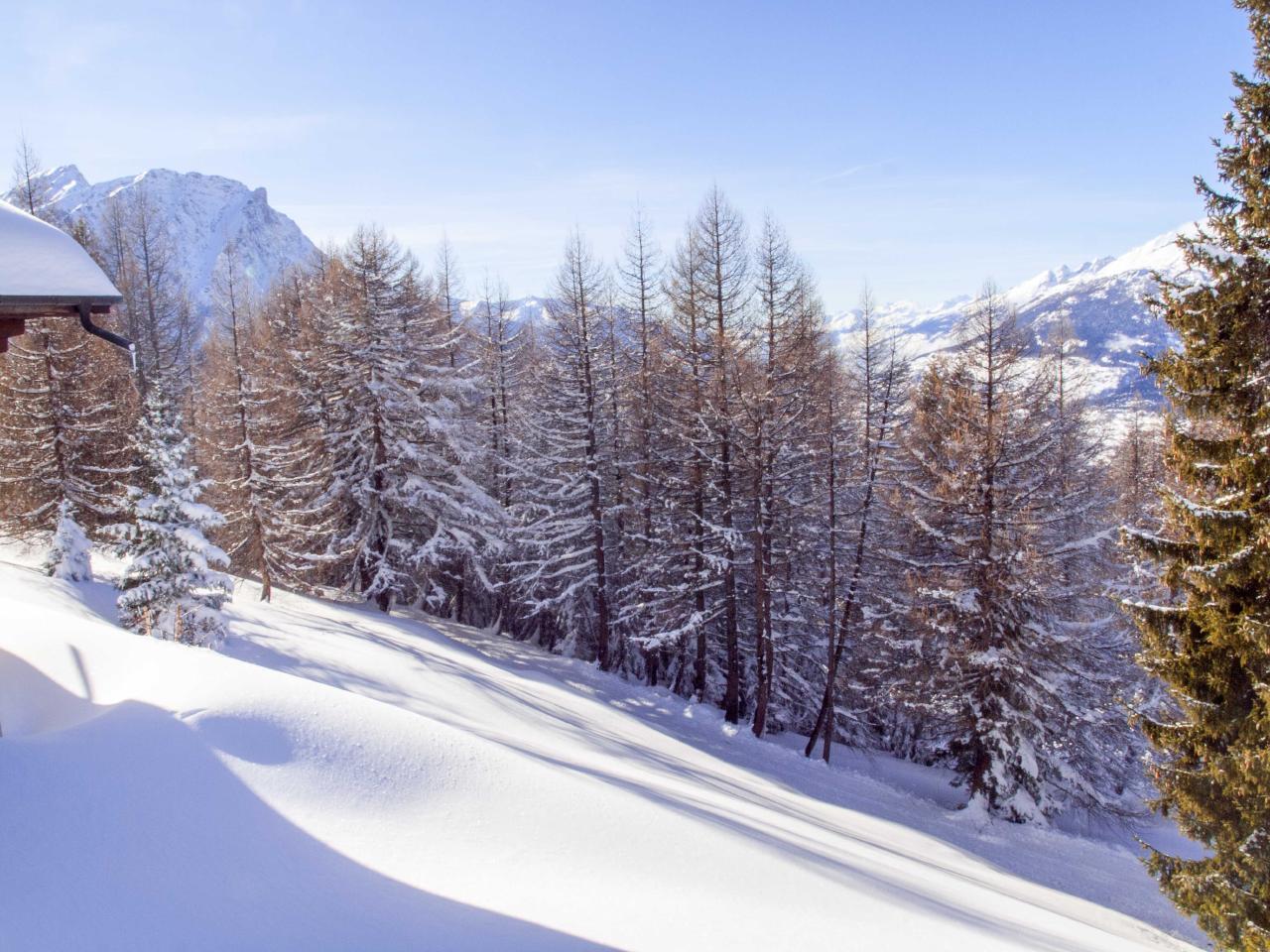 Ferienwohnung Chalet Bergfink | Ferienwohnung in den Walliser Bergen auf Rosswald (2311758), Rosswald, Brig - Simplon, Wallis, Schweiz, Bild 12