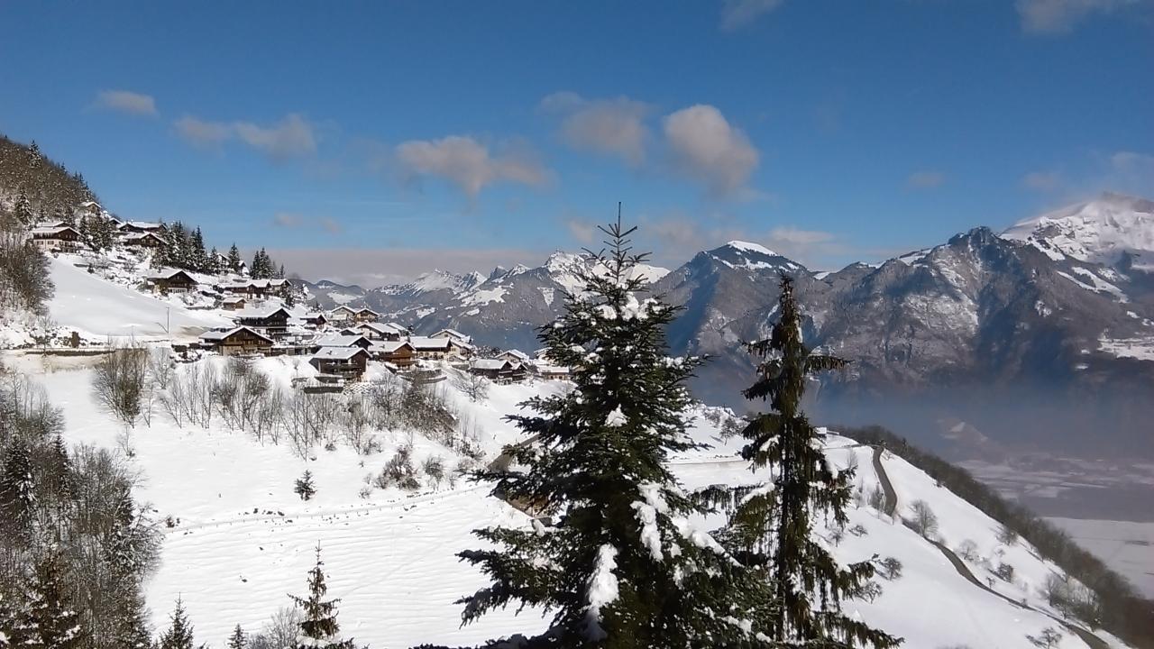 Ferienwohnung Maisonette-Wohnung (2314590), Torgon, Portes du Soleil (CH), Wallis, Schweiz, Bild 4