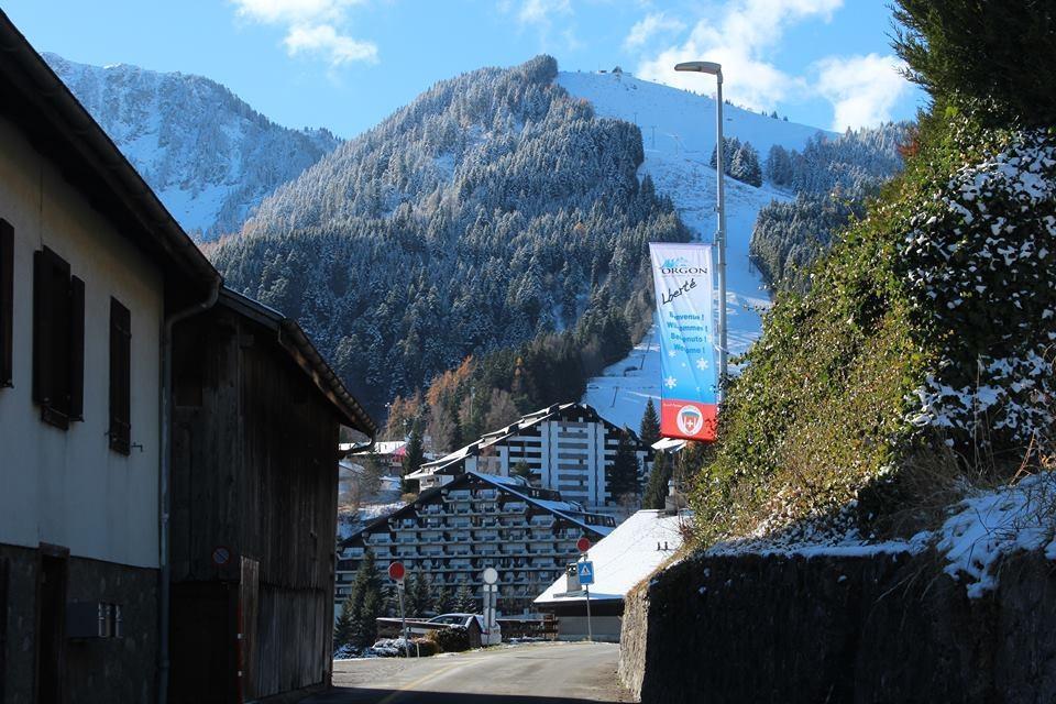 Ferienwohnung Maisonette-Wohnung (2314590), Torgon, Portes du Soleil (CH), Wallis, Schweiz, Bild 6