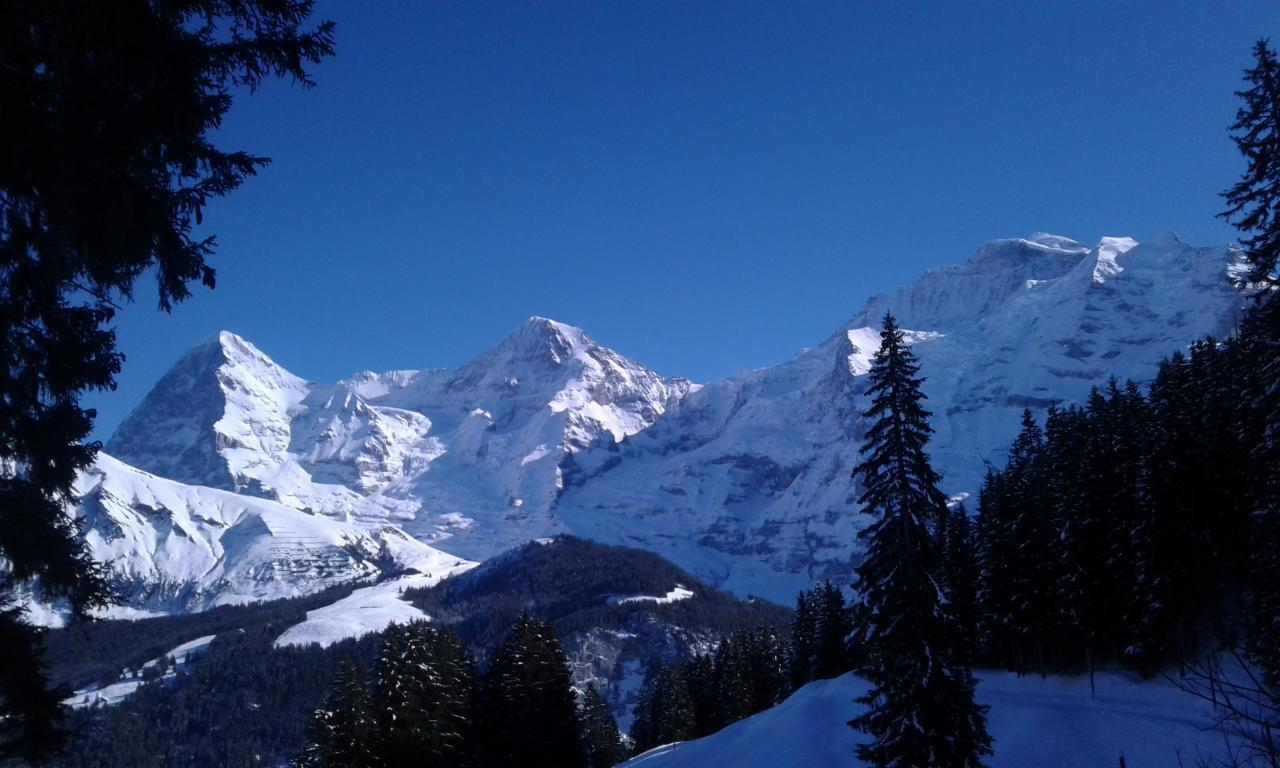 Ferienhaus Bühlen (2331113), Grindelwald, Jungfrauregion, Berner Oberland, Schweiz, Bild 20