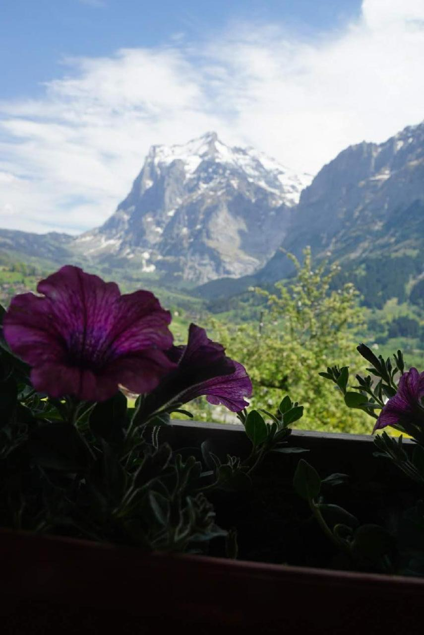 Ferienhaus Bühlen (2331113), Grindelwald, Jungfrauregion, Berner Oberland, Schweiz, Bild 15