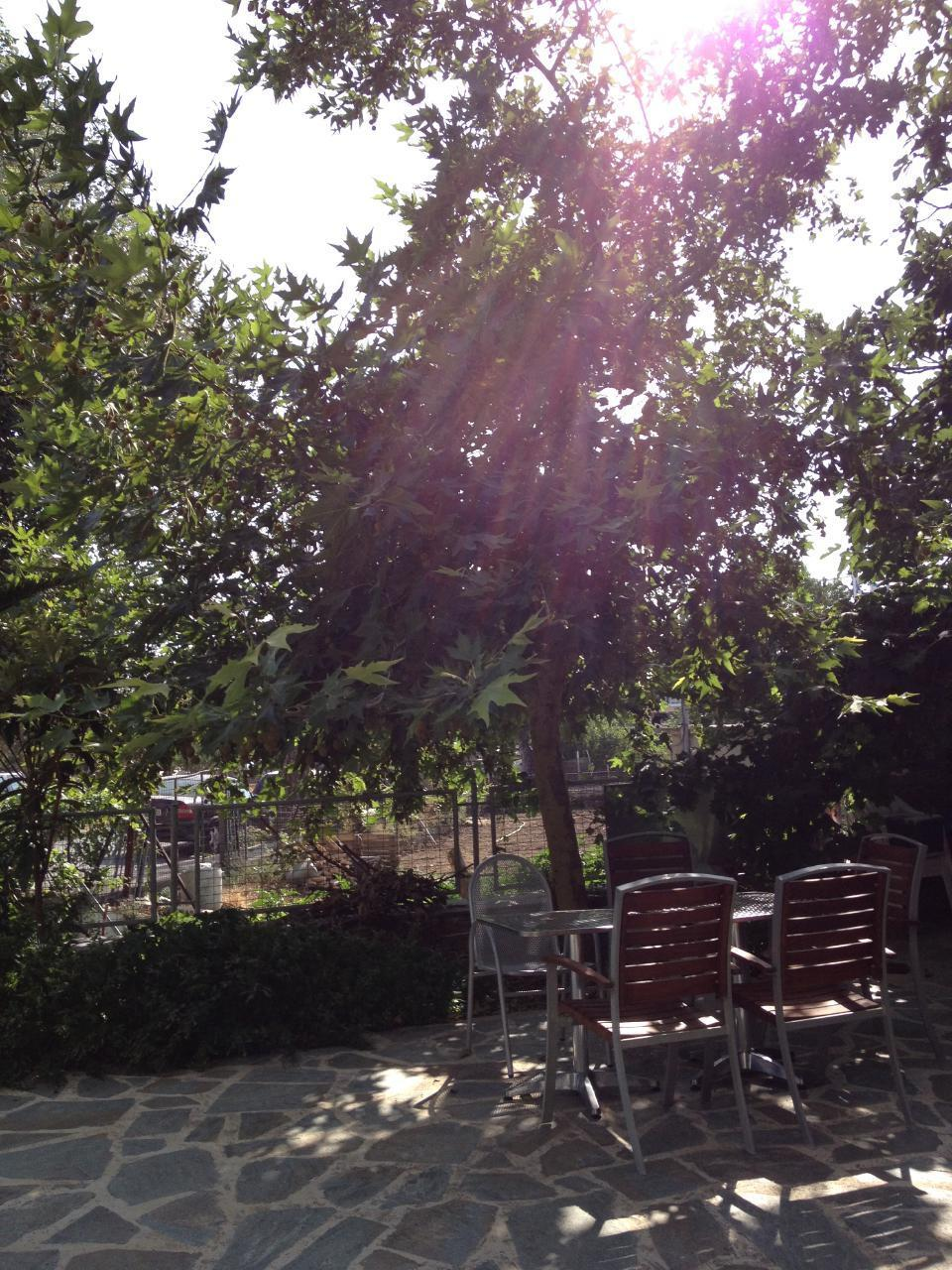 Holiday apartment GIKAS Studio G3 (27qm) (234193), Marmari, , Euboea, Greece, picture 15