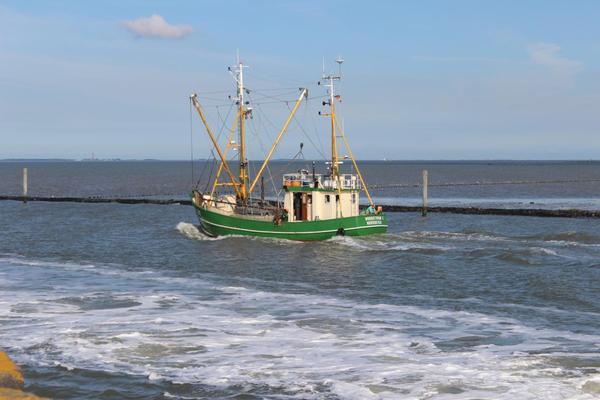 Auslauf zum Fischfang