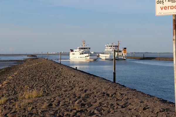 Begegnungsverkehr zw. Frisiafähren auf der Fahrt n.Norderney