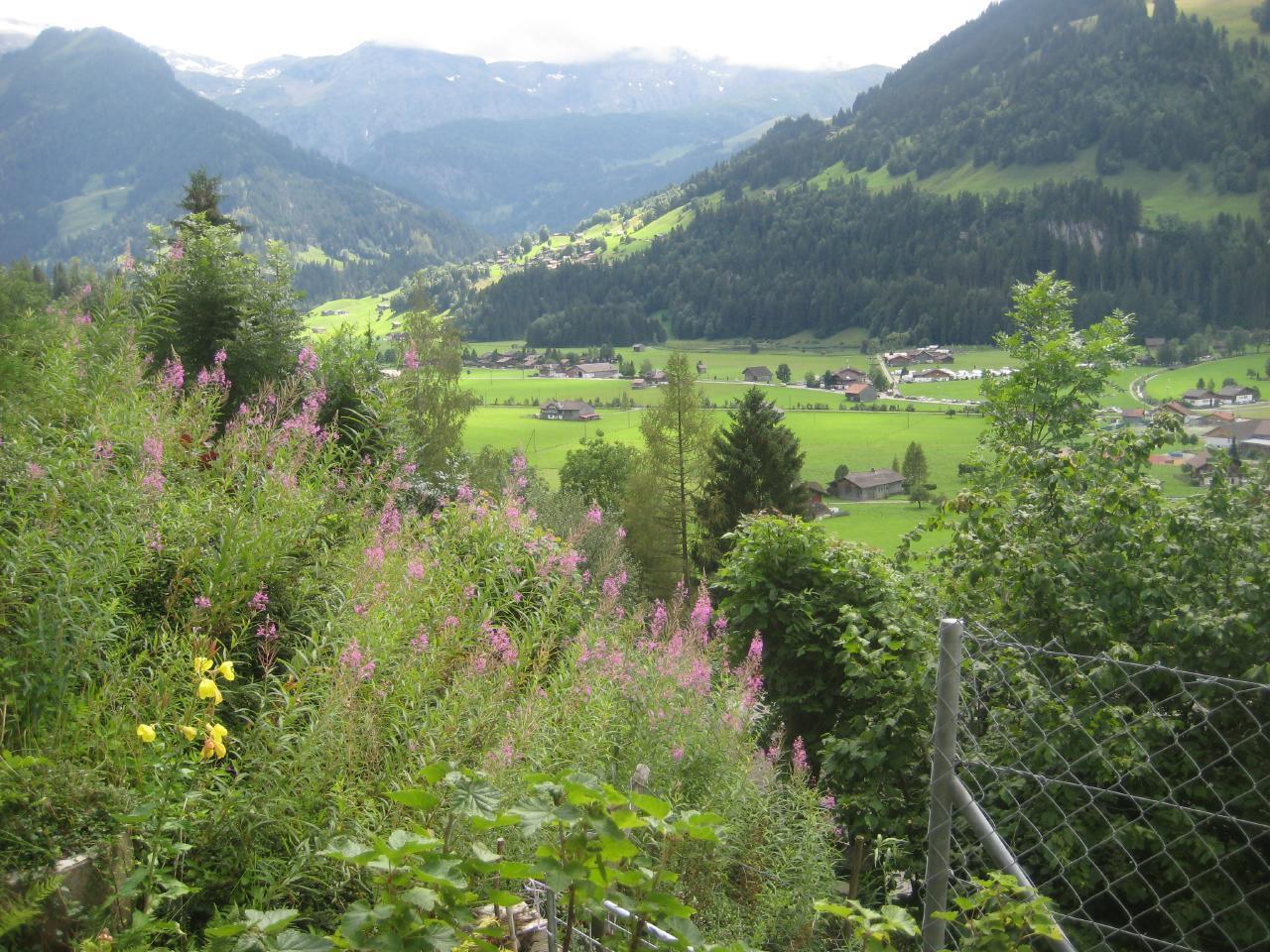 Ferienwohnung Chalet Domino 6-Bett -Wohnung (2350302), Lenk im Simmental, Simmental, Berner Oberland, Schweiz, Bild 19