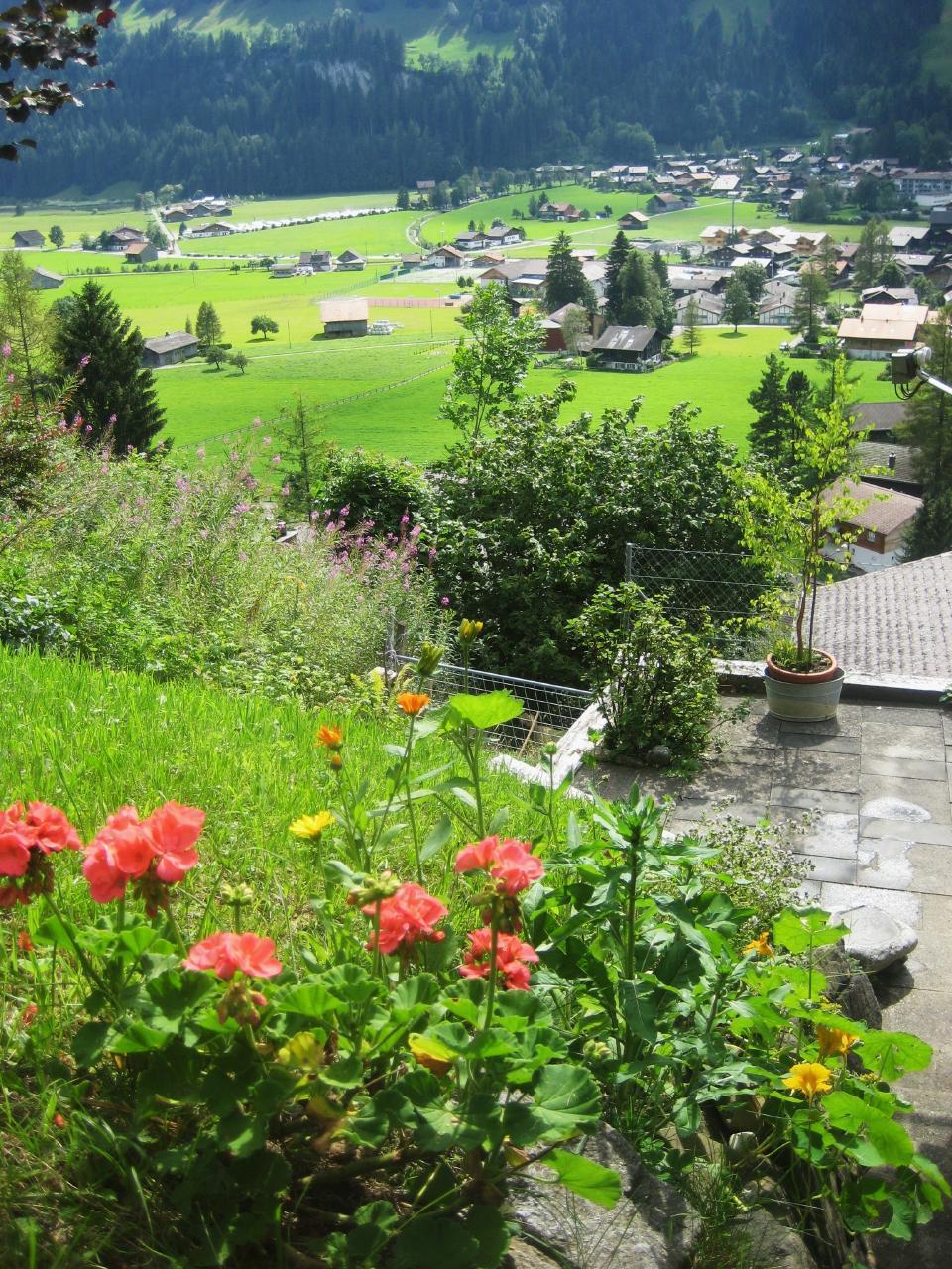 Ferienwohnung Chalet Domino 6-Bett -Wohnung (2350302), Lenk im Simmental, Simmental, Berner Oberland, Schweiz, Bild 17