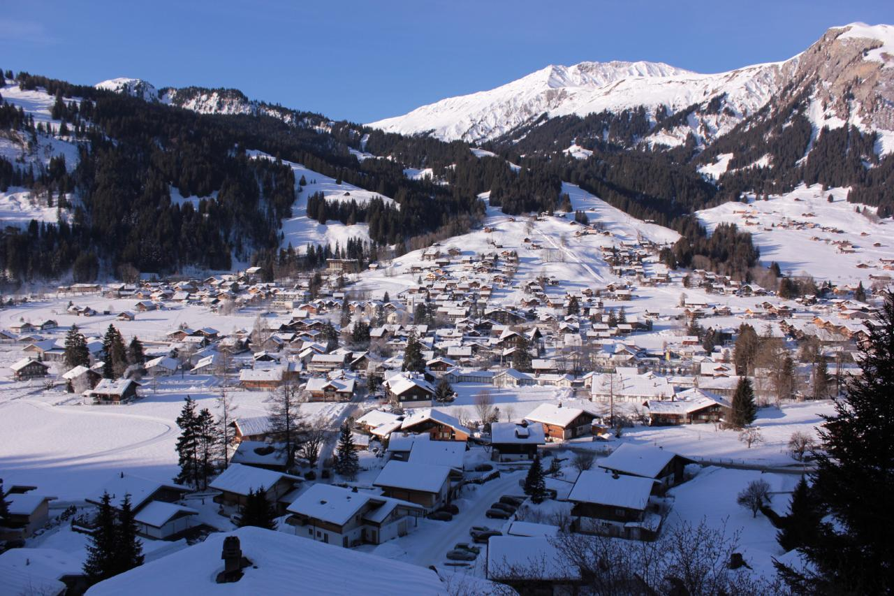 Ferienwohnung Chalet Domino 6-Bett -Wohnung (2350302), Lenk im Simmental, Simmental, Berner Oberland, Schweiz, Bild 4