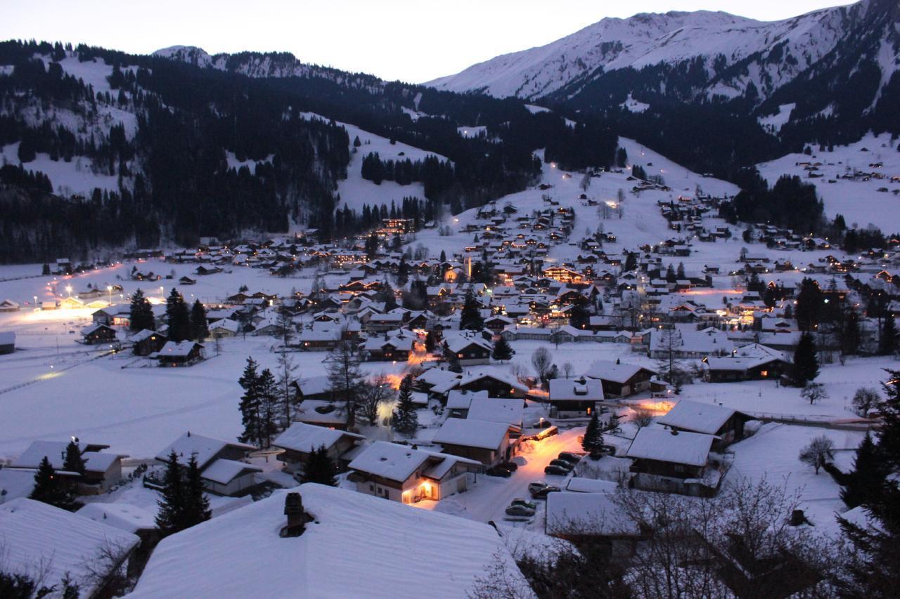 Ferienwohnung Chalet Domino 6-Bett -Wohnung (2350302), Lenk im Simmental, Simmental, Berner Oberland, Schweiz, Bild 5