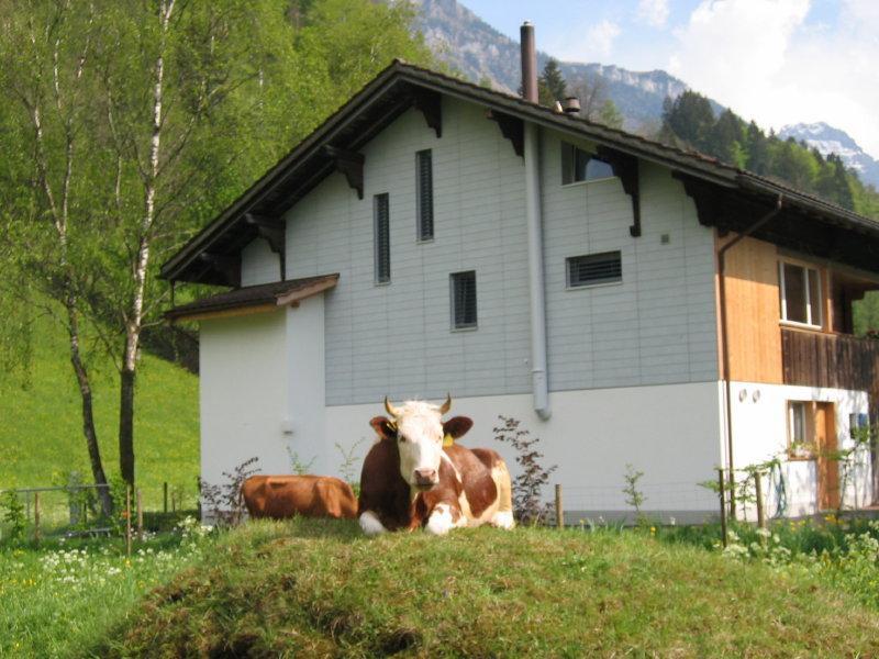 Appartement de vacances 2-Zimmer Wohnung im Ferienparadies Kandertal (2385249), Kandergrund, Adelboden - Frutigen - Kandersteg, Oberland bernois, Suisse, image 2