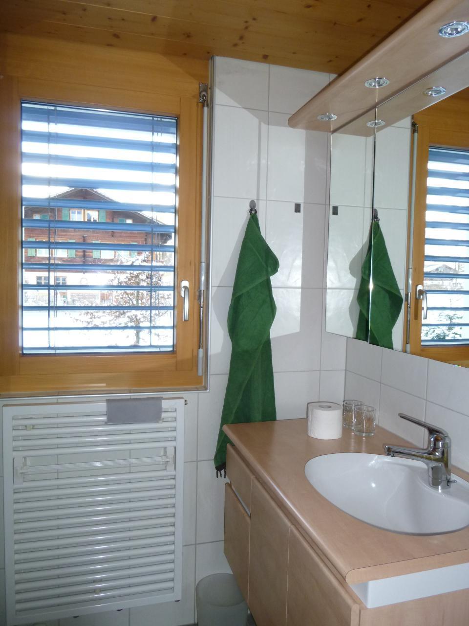 Appartement de vacances 2-Zimmer Wohnung im Ferienparadies Kandertal (2385249), Kandergrund, Adelboden - Frutigen - Kandersteg, Oberland bernois, Suisse, image 15