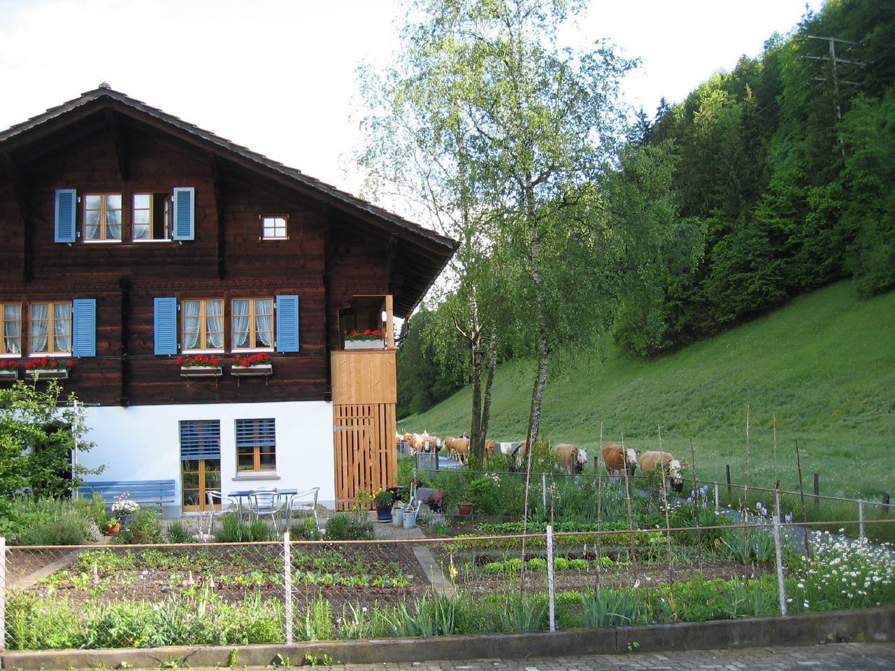 Appartement de vacances 2-Zimmer Wohnung im Ferienparadies Kandertal (2385249), Kandergrund, Adelboden - Frutigen - Kandersteg, Oberland bernois, Suisse, image 3
