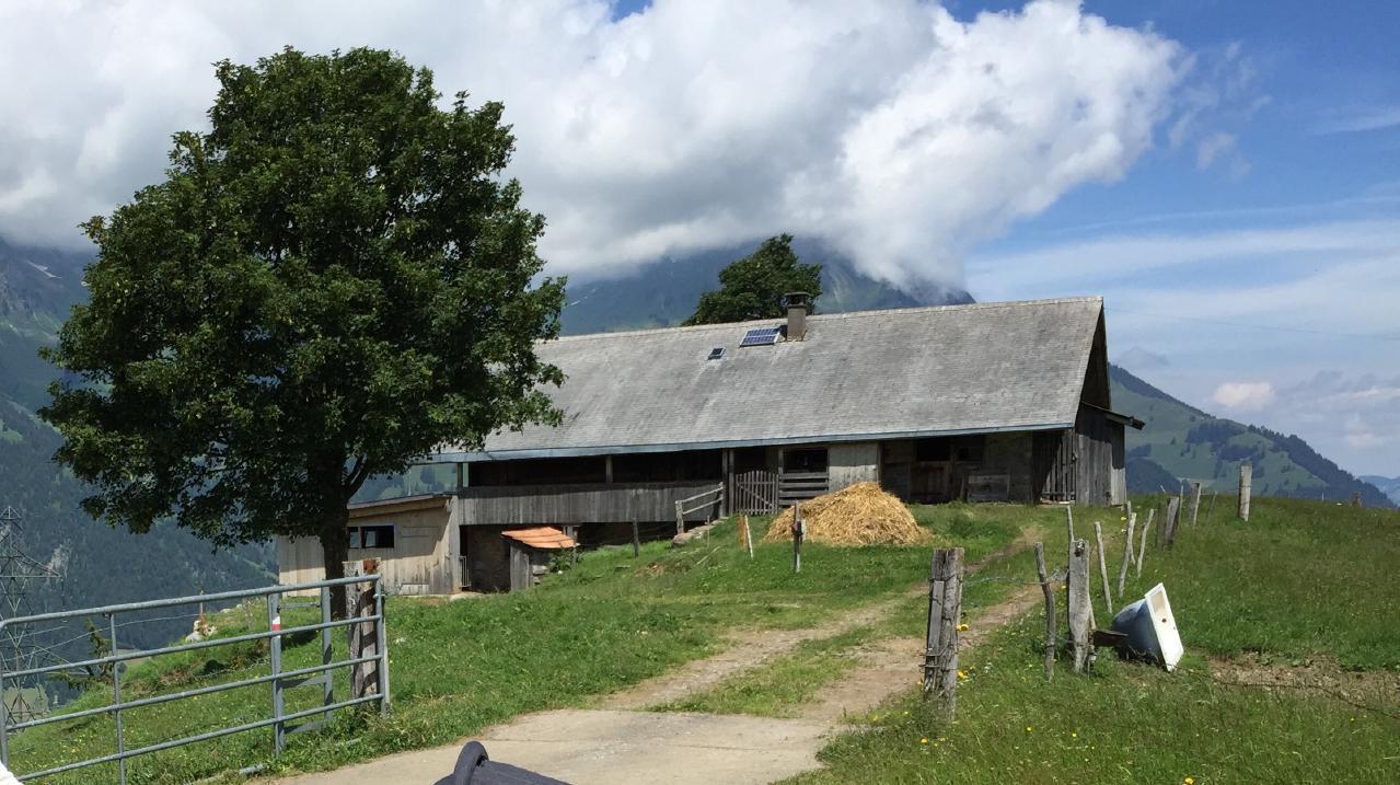 Hofuri Hütte