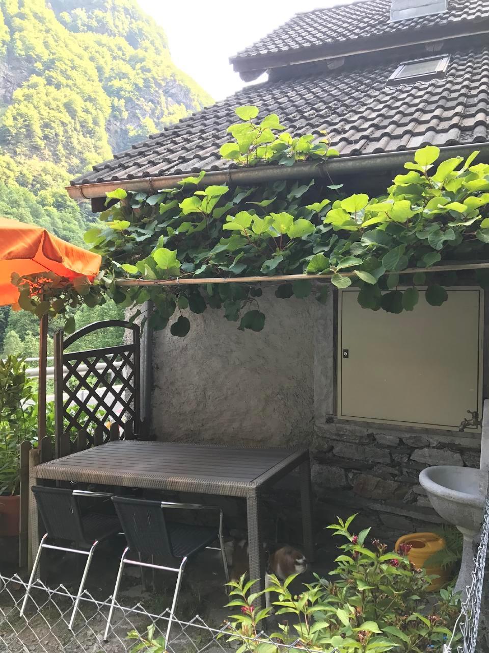 Ferienhaus Rustico Casa Valeria (2390790), Brontallo, Maggiatal, Tessin, Schweiz, Bild 8