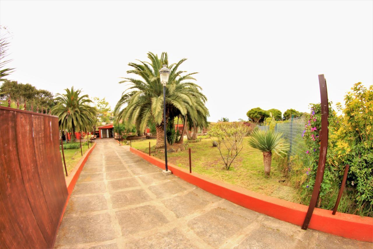 Maison de vacances Casita auf luxuriöser Finca in idyllischer Lage, Whirlpool, Atlantik- und Teidepanorama (2397261), Tacoronte, Ténérife, Iles Canaries, Espagne, image 32