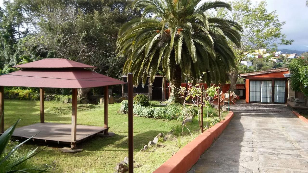 Maison de vacances Casita auf luxuriöser Finca in idyllischer Lage, Whirlpool, Atlantik- und Teidepanorama (2397261), Tacoronte, Ténérife, Iles Canaries, Espagne, image 34