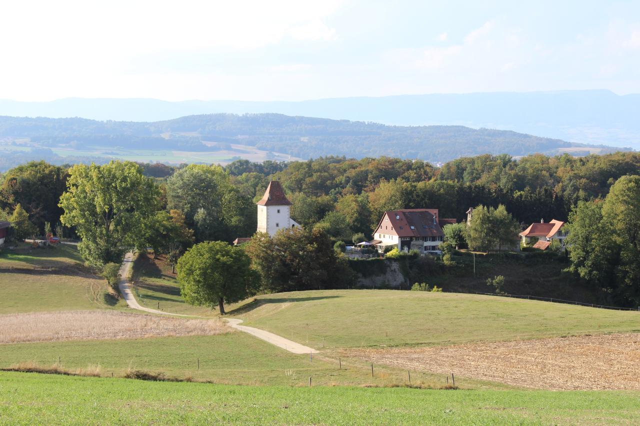 Appartement de vacances Ferme des Glycines (2412051), Villarzel, Lac de Neuchâtel, Jura - Neuchâtel, Suisse, image 8