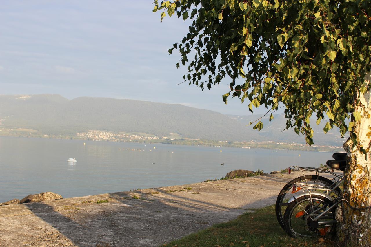 Appartement de vacances Ferme des Glycines (2412051), Villarzel, Lac de Neuchâtel, Jura - Neuchâtel, Suisse, image 11