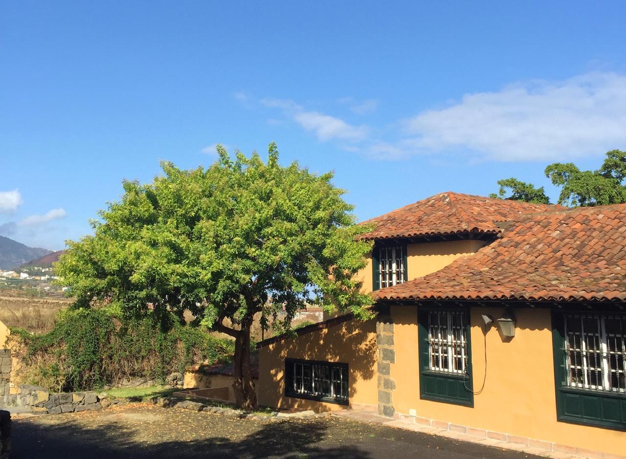 Maison de vacances Kanarisches Haus wundervoller privater Garten (2412059), San Miguel, Ténérife, Iles Canaries, Espagne, image 6