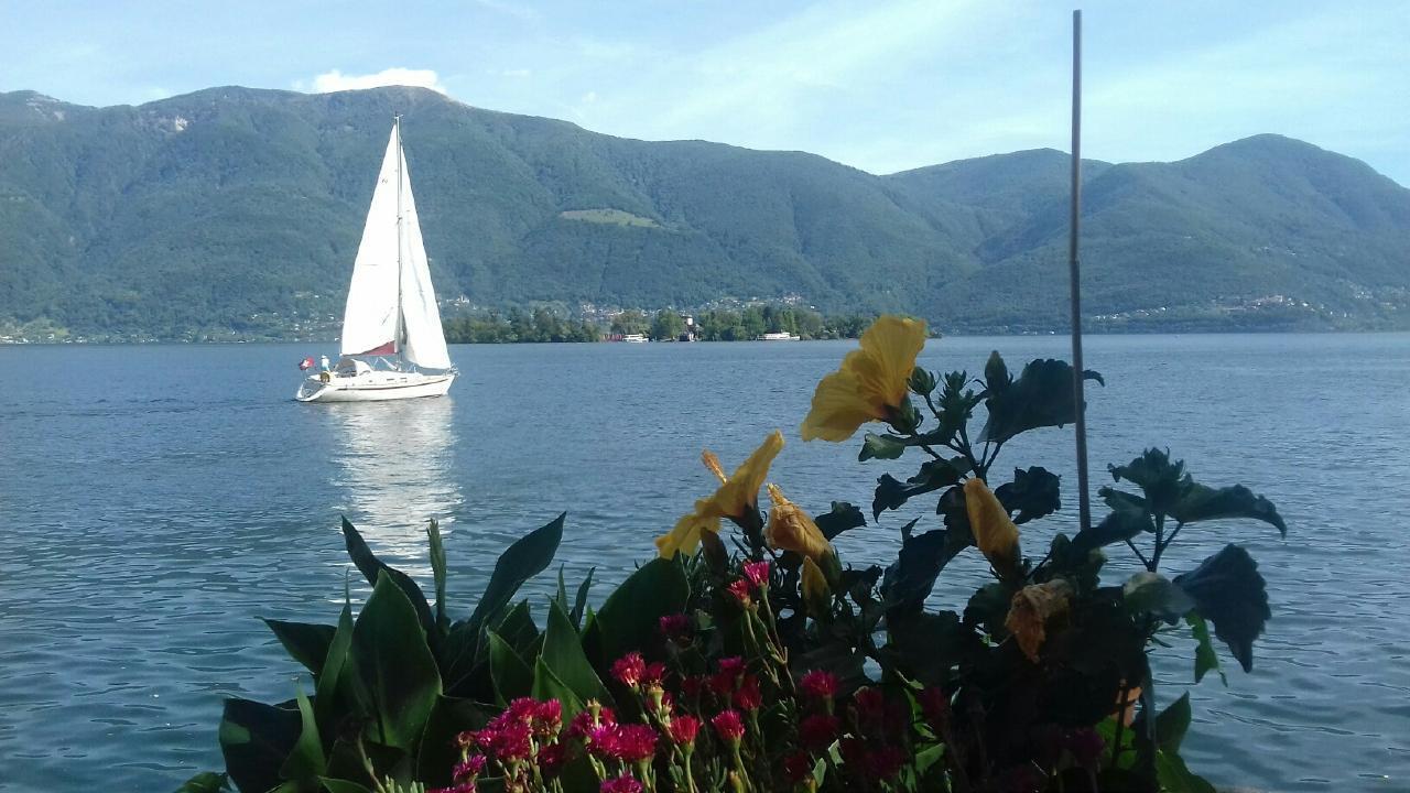 Appartement de vacances Casa San Martino - Standard Wohnung 3 (2416000), Porto Ronco, Lac Majeur (CH), Tessin, Suisse, image 5