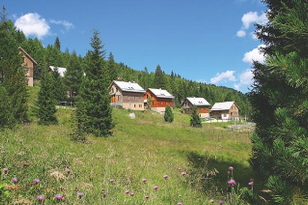 Ferienhaus Chalet Waldblick (242533), Turrach, Murtal, Steiermark, Österreich, Bild 12